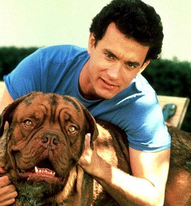 30 Dogs That Made Movie History