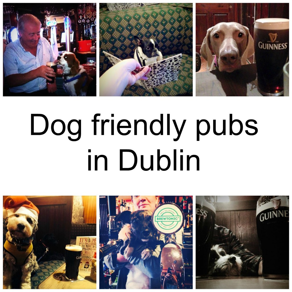 Dog Friendly Pubs in Dublin