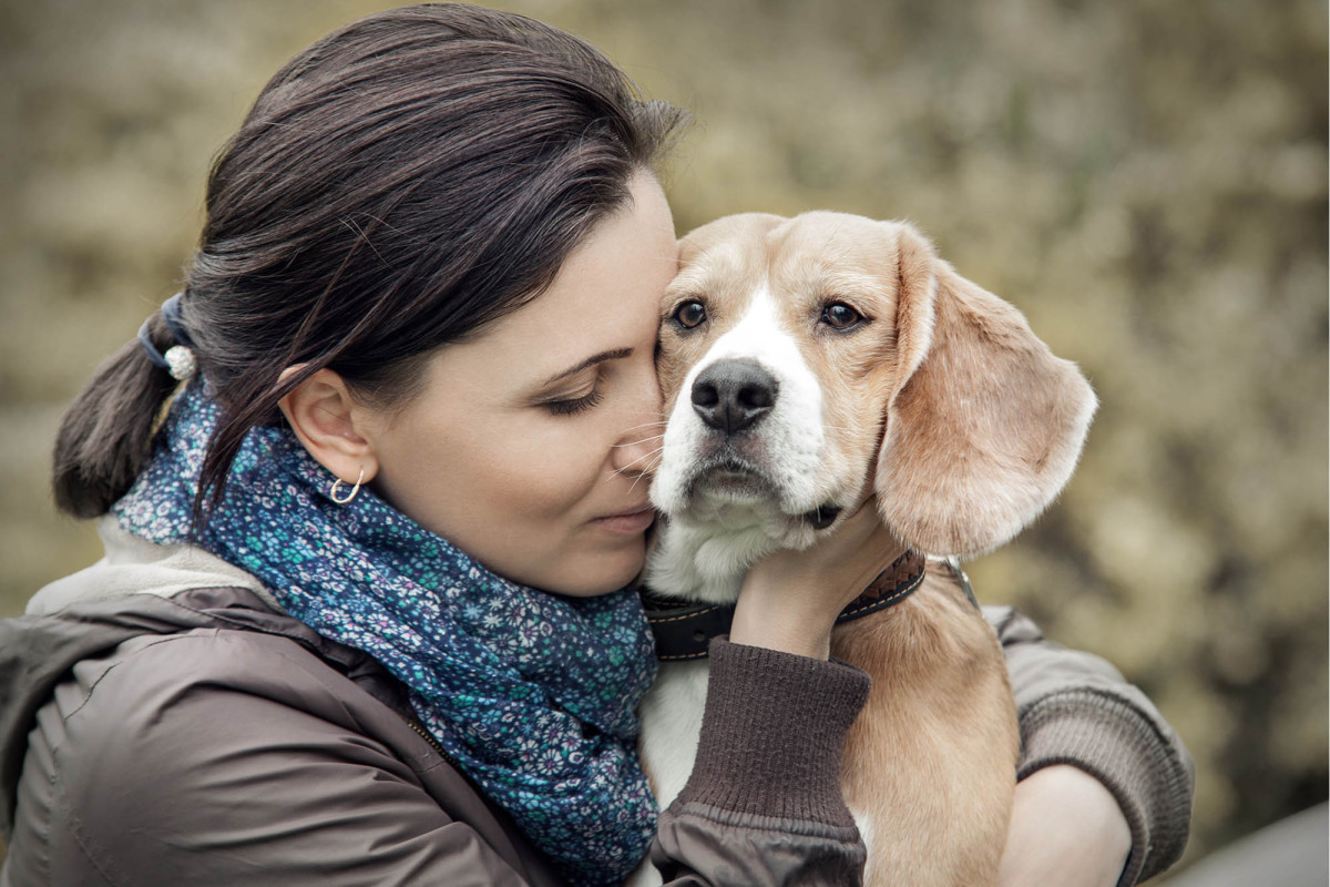 Top Ten Tips On Dealing With Pet Loss