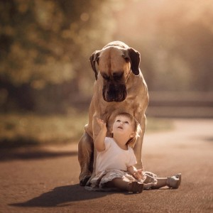 12 Pictures of Childrens Best Friend
