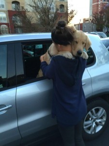 12 Photos of Dogs And People Hugging